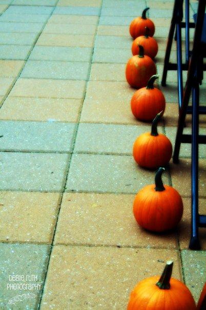 pumpkins on aisle