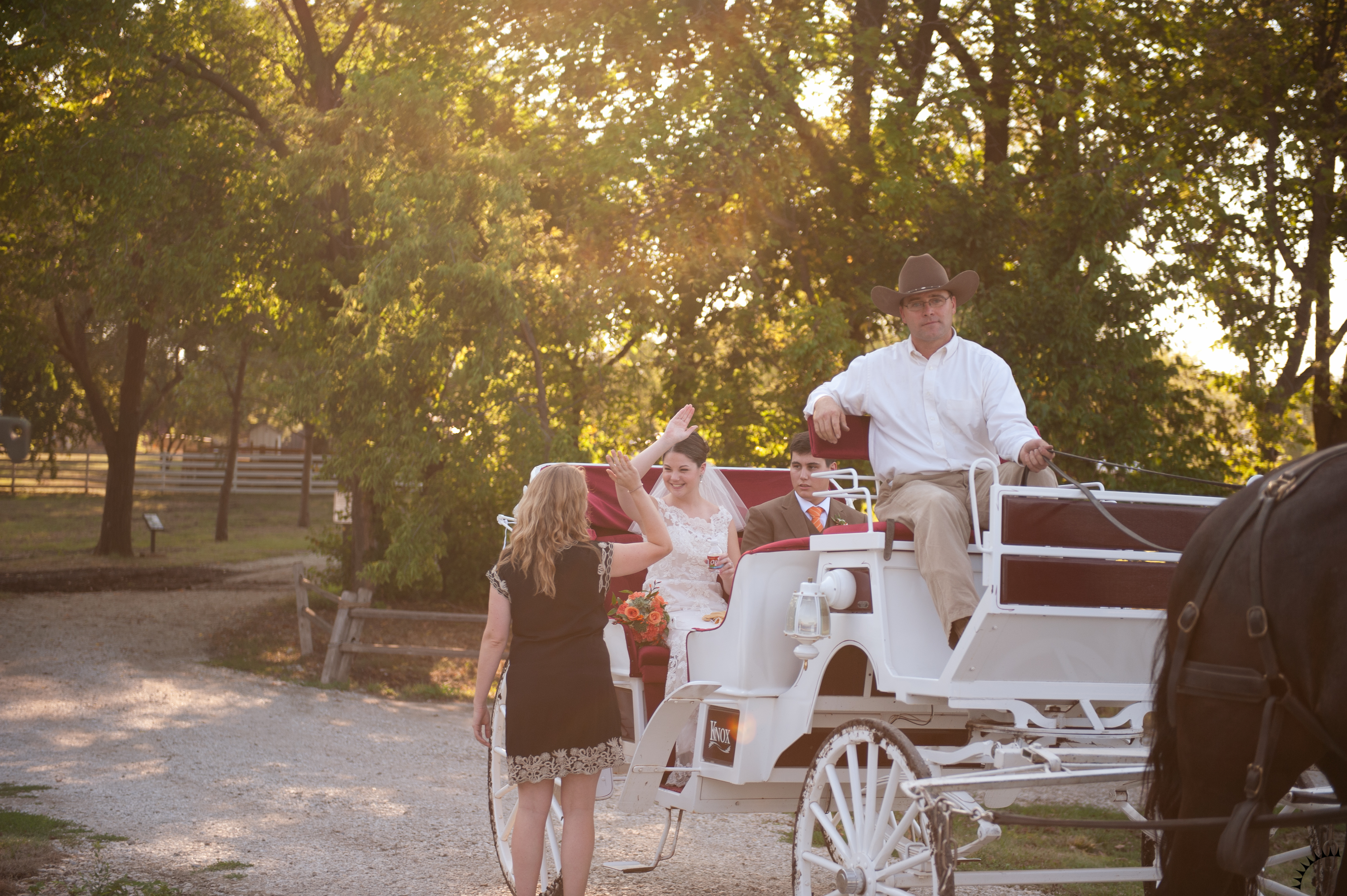 Hitched Weddings + Events
