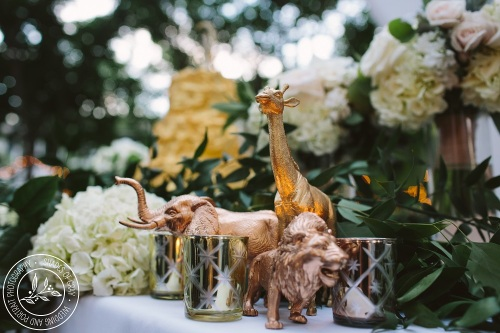 Kansas City backyard wedding reception